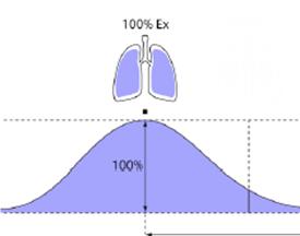Respiratory Gating/4DCT Virtual Classroom