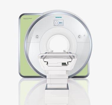 MR BOLD Evaluation & Neuro3D Postprocessing - Eline