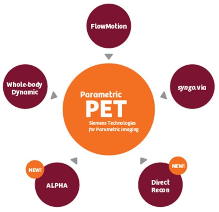 Multi-Parametric PET Imaging Example Workflow