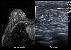 Ultrasound -Women's Health